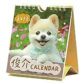 2013年 動物写真デスクカレンダー (週めくりミニ/ポメラニアン・俊介)