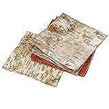 東京堂 天然素材 白樺皮 正方形M (6枚入り) DT073357