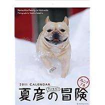 2011年1月始まり 夏彦ファミリーの冒険/坂下康裕 壁掛カレンダー C-352-A