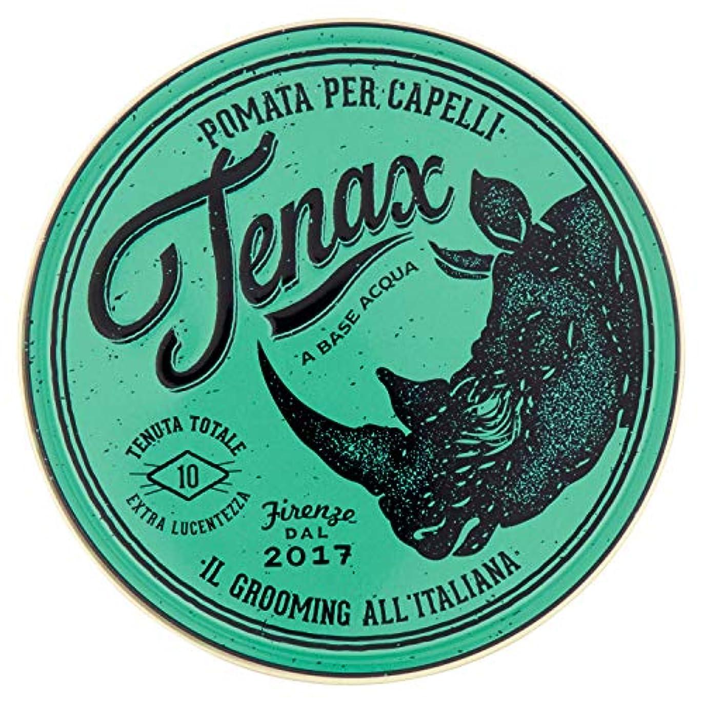 地理種をまく努力Tenax(テナックス) ポマード エクストラ ストロング
