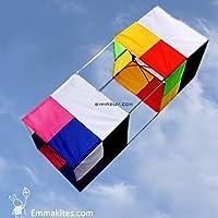 3dボックス従来Kite Flyingのさまざまな条件で安定風Easy to Assemble and Fly便利バッグは便利なアウトドア活動Your。