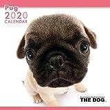2020年 THEDOGカレンダー パグ
