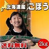 北海道産 土付き ごぼう 2kg