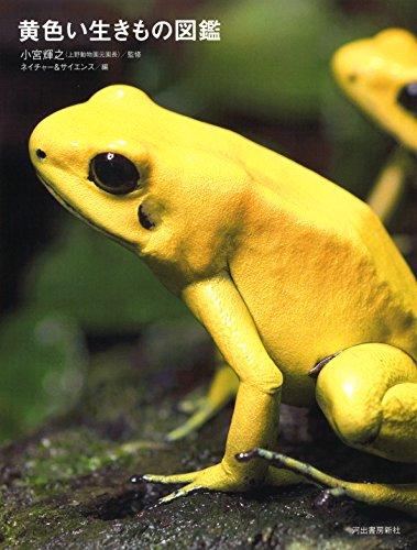 黄色い生きもの図鑑