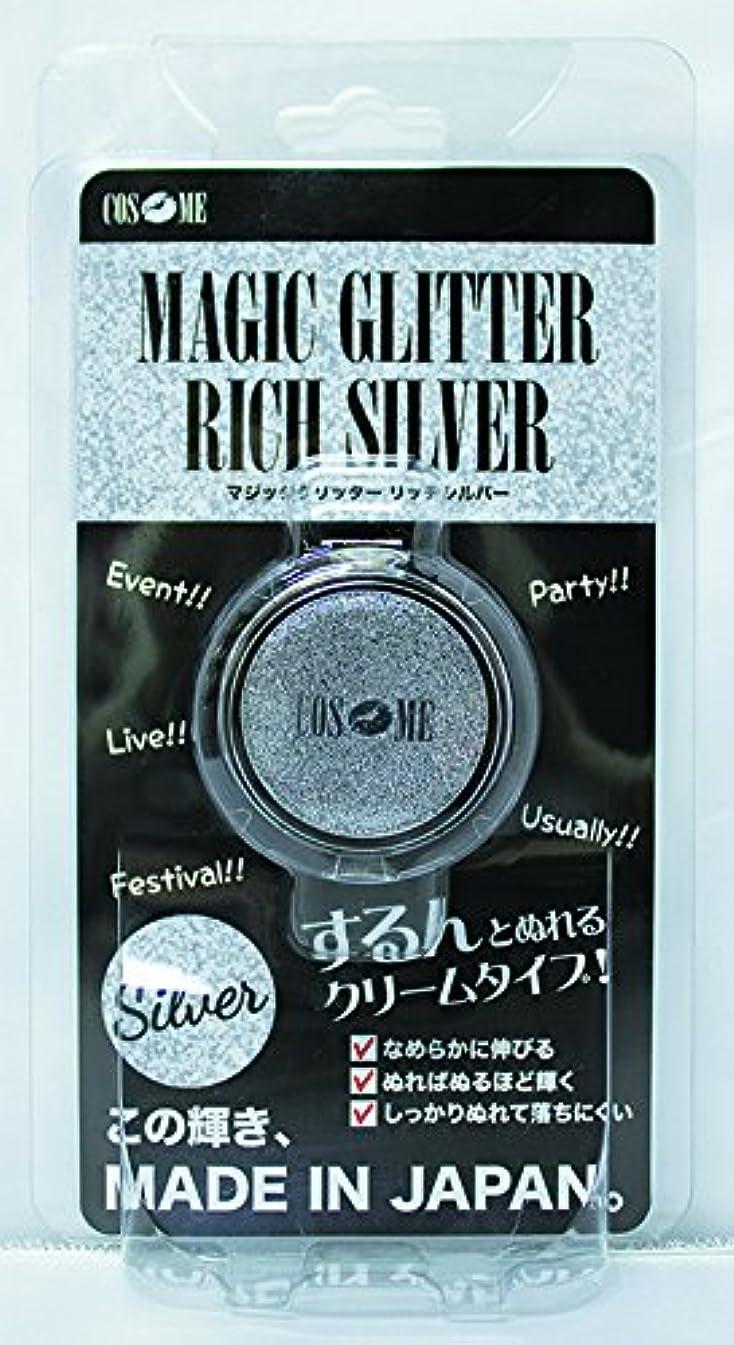 メイン縞模様の配列ピュア コスチューム コスメ マジックグリッター シルバー