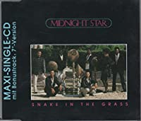 Snake in the grass [Single-CD]