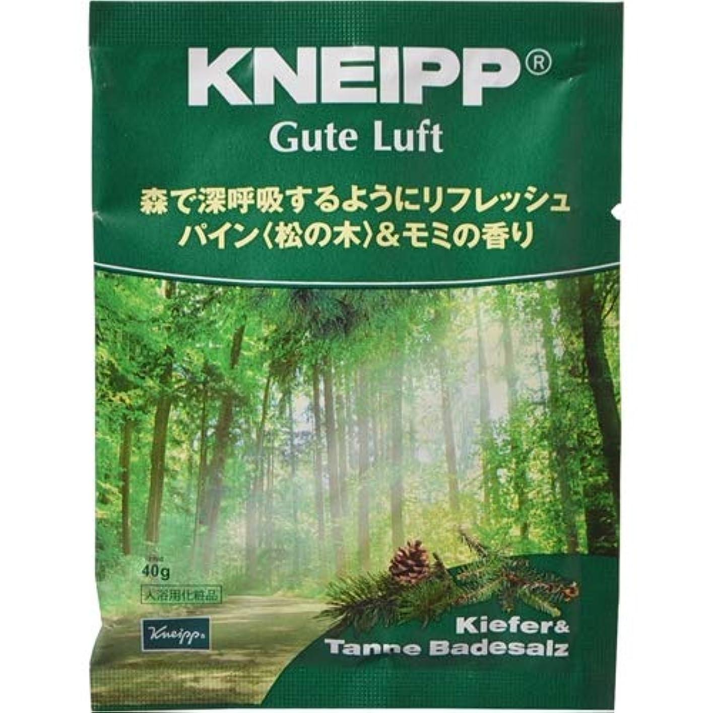 リゾート誠実さばかげたクナイプ・ジャパン クナイプ グーテルフト バスソルト パイン<松の木>&モミの香り 40g