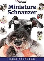 卓上 THE DOG カレンダー ミニチュアシュナウザー 2020年カレンダー