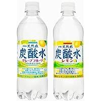 サンガリア伊賀の天然水 炭酸水グレープフルーツ・炭酸水レモン500mlペット 24本入り2ケースセット