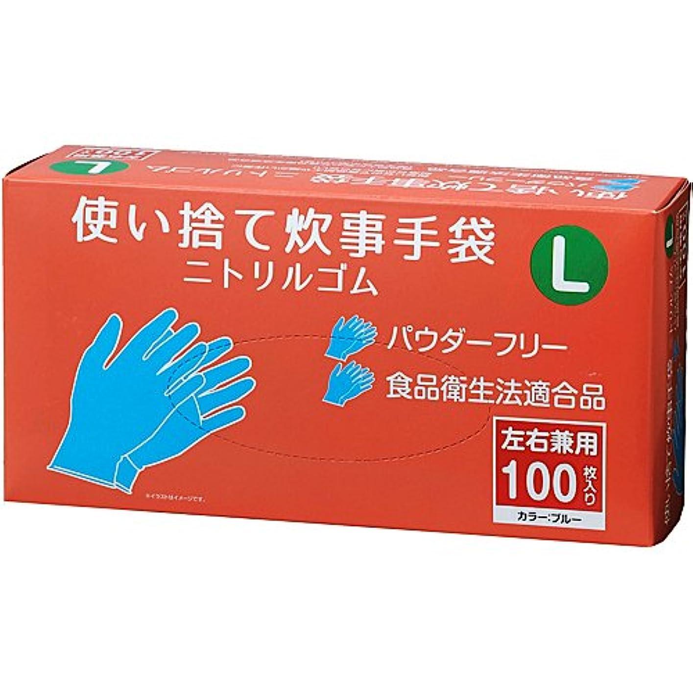 憤る送るレジコーナンオリジナル 使い捨て炊事手袋 ニトリルゴム 100枚入り L