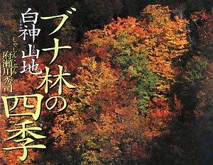 ブナ林の四季・白神山地 (そうえんしゃ・写真のえほん)の詳細を見る