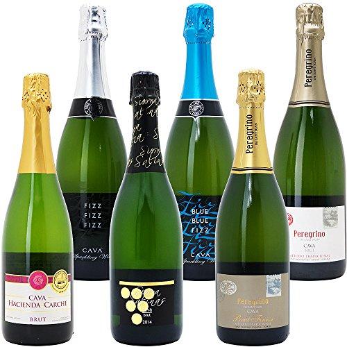 本格シャンパン製法だけの厳選泡6本セット(750mlx6本ワ...