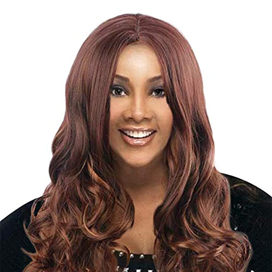 凍るまばたき中央かつら長い巻き毛の混合色のセクシーなファッションかつらバラネット
