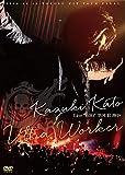 Kazuki Kato Live