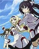 【Amazon.co.jp限定】IS<インフィニット・ストラトス>2 OVA ワールド・パージ編(Amazonギフト券付き) [Blu-ray]