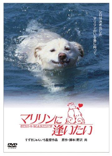 「きな子~見習い警察犬の物語~」DVD発売記念  犬だワンダフルキャンペーン マリリンに逢いたい (限定生産)