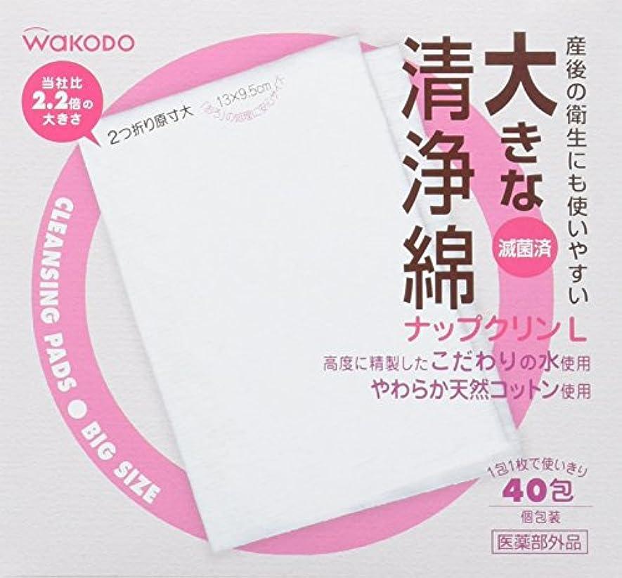 延ばす見て吸収大きな清浄綿 ナップクリンL 40包