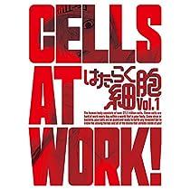 はたらく細胞 1(完全生産限定版) [Blu-ray]
