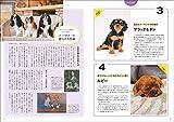 愛犬の友 2019年 11月号 [雑誌] 画像