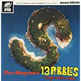 13 PEBBLES~Single Collection~