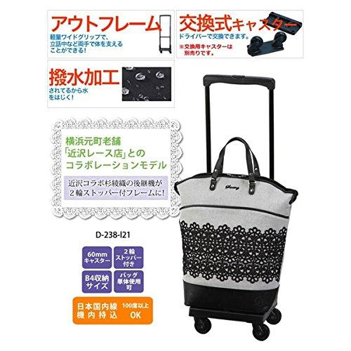 近沢レース店コラボレーションモデルIII L21 45cm D-238