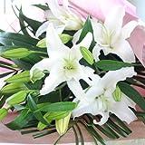 白ユリの花束 ゆり 大輪系 お花の数 20輪以上 百合 ギフト 白ユリ