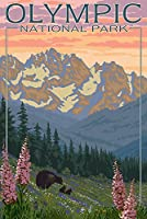 オリンピック国立公園 – Bear Family and Spring Flowers 9 x 12 Art Print LANT-11266-9x12