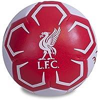 Liverpool F.C. 4 inch Soft Ball / リバプール F.C. 4インチ ソフト ボール