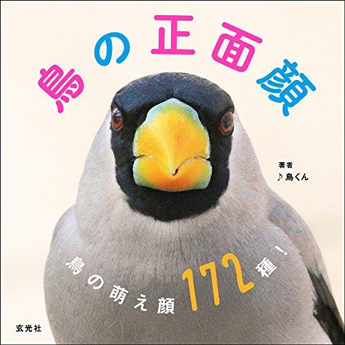 鳥の正面顔 -