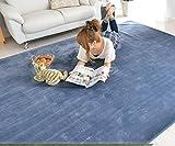 なかね家具 洗えるラグ ホットカーペット対応 滑り止め 軽量 長方形 無地 ラグマット 200x300 ブルー 599poni-