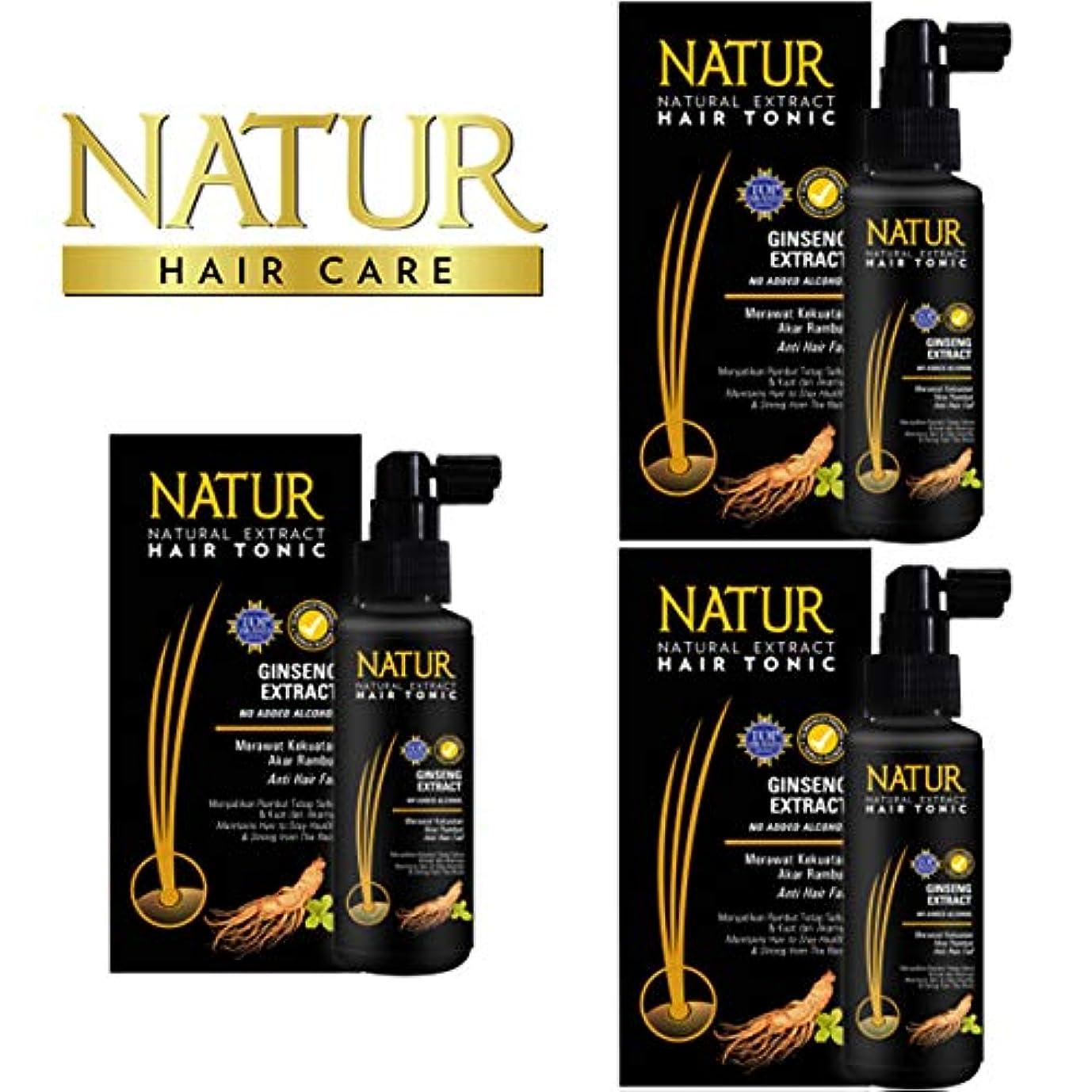 落ち着かない伝導率動的NATUR ナトゥール 天然植物エキス配合 Hair Tonic ハーバルヘアトニック 90ml×3個セット Ginseng ジンセン [海外直商品]