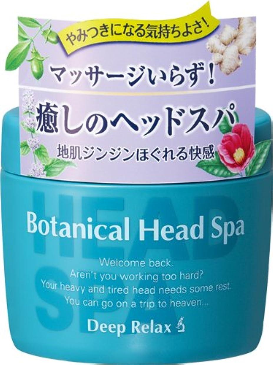 負落ち込んでいるペイント髪質改善研究所 ボタニカルヘッドスパ 270g