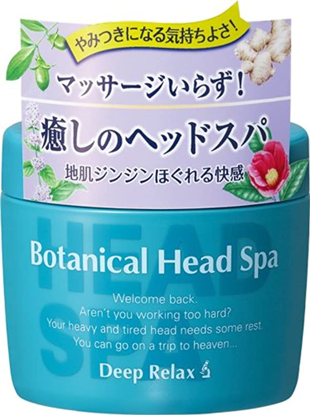 遠近法苦痛シンプトン髪質改善研究所 ボタニカルヘッドスパ 270g