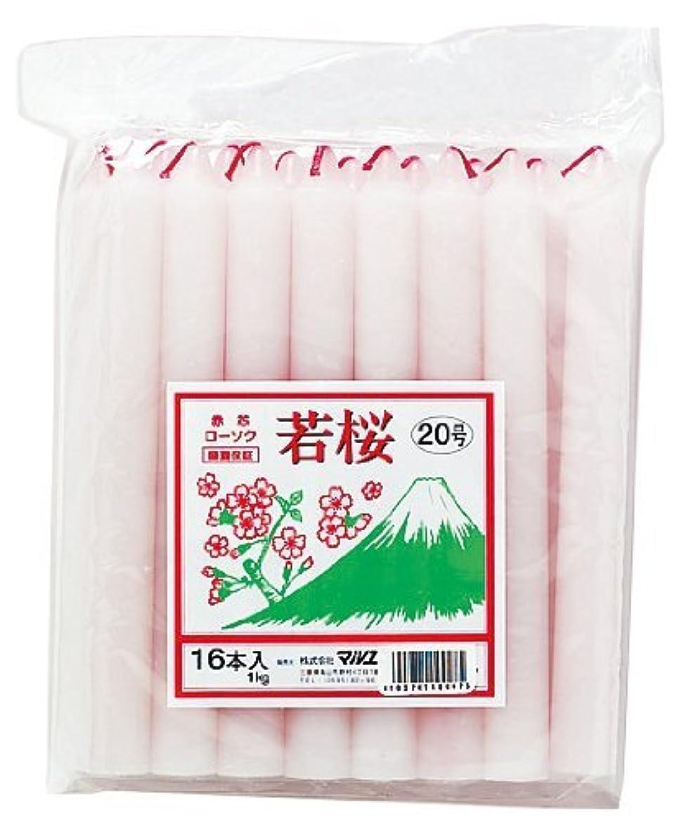 ロータリーそれに応じてプレーヤーマルエス 若桜 赤芯20号 1kg
