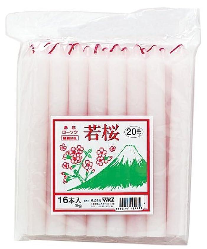 ポーチ柔らかい維持マルエス 若桜 赤芯20号 1kg