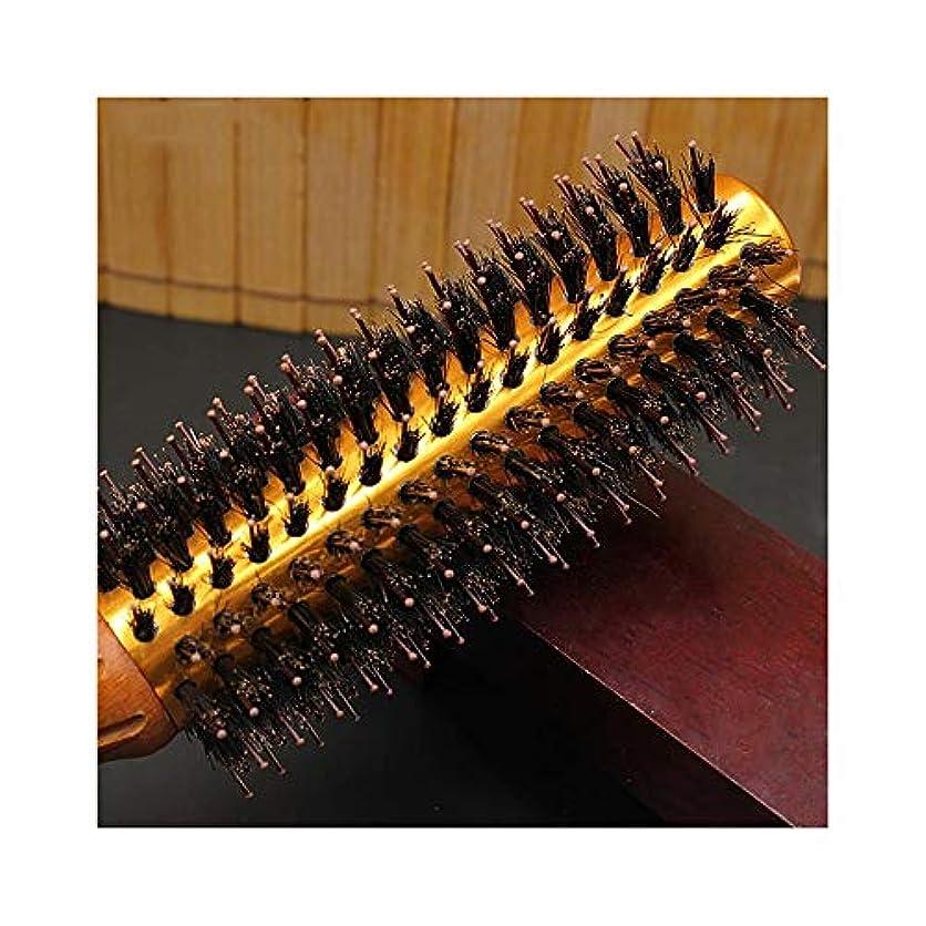 公使館薬剤師空港WASAIO ヘアブラシブラシラウンドブロー乾燥自然毛スタイリング用ナイロンプロくし (サイズ : L)