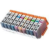 lic-store 10x ( 1スモールブラック、1マットブラック、1、1フォトシアン、1写真マゼンタ、シアン、1緑、1グレー1マゼンタ、1Red , 1イエロー)互換for use with Canon Pixma pro9500、Pixma pro9500マークII。I