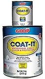 Amazing GOOP 5400060 Coat-It Epoxy Sealer Adhesive Kit - 8 lb by Amazing GOOP