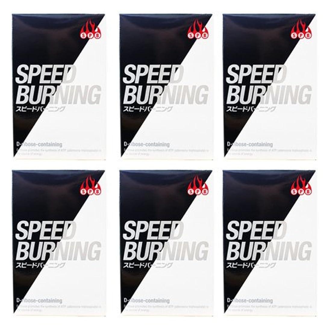 確率東ティモール電気スピードバーニング SPEED BURNING×6個