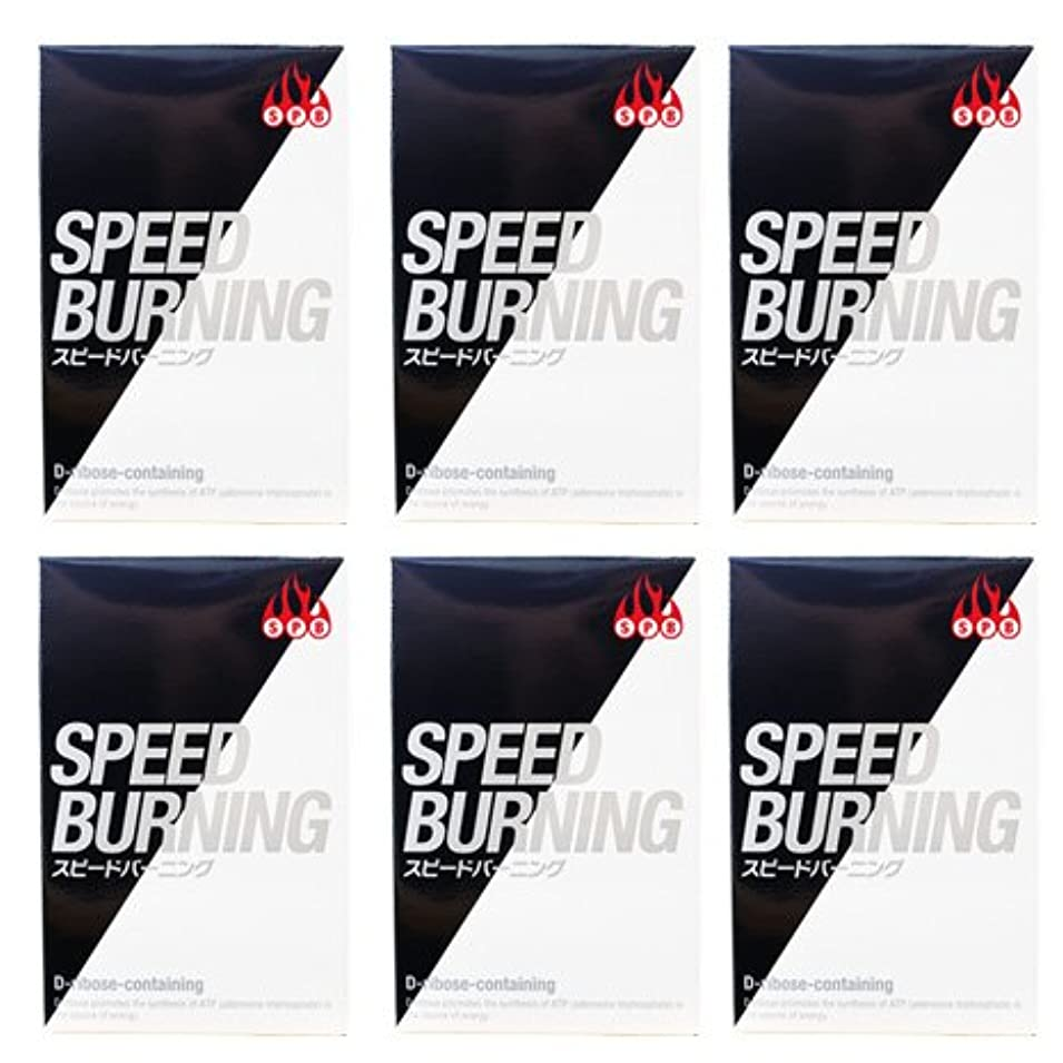 ケイ素空白ジョージバーナードスピードバーニング SPEED BURNING×6個