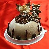 クリスマスアイスケーキ 生チョコレート 2015クリスマスケーキ