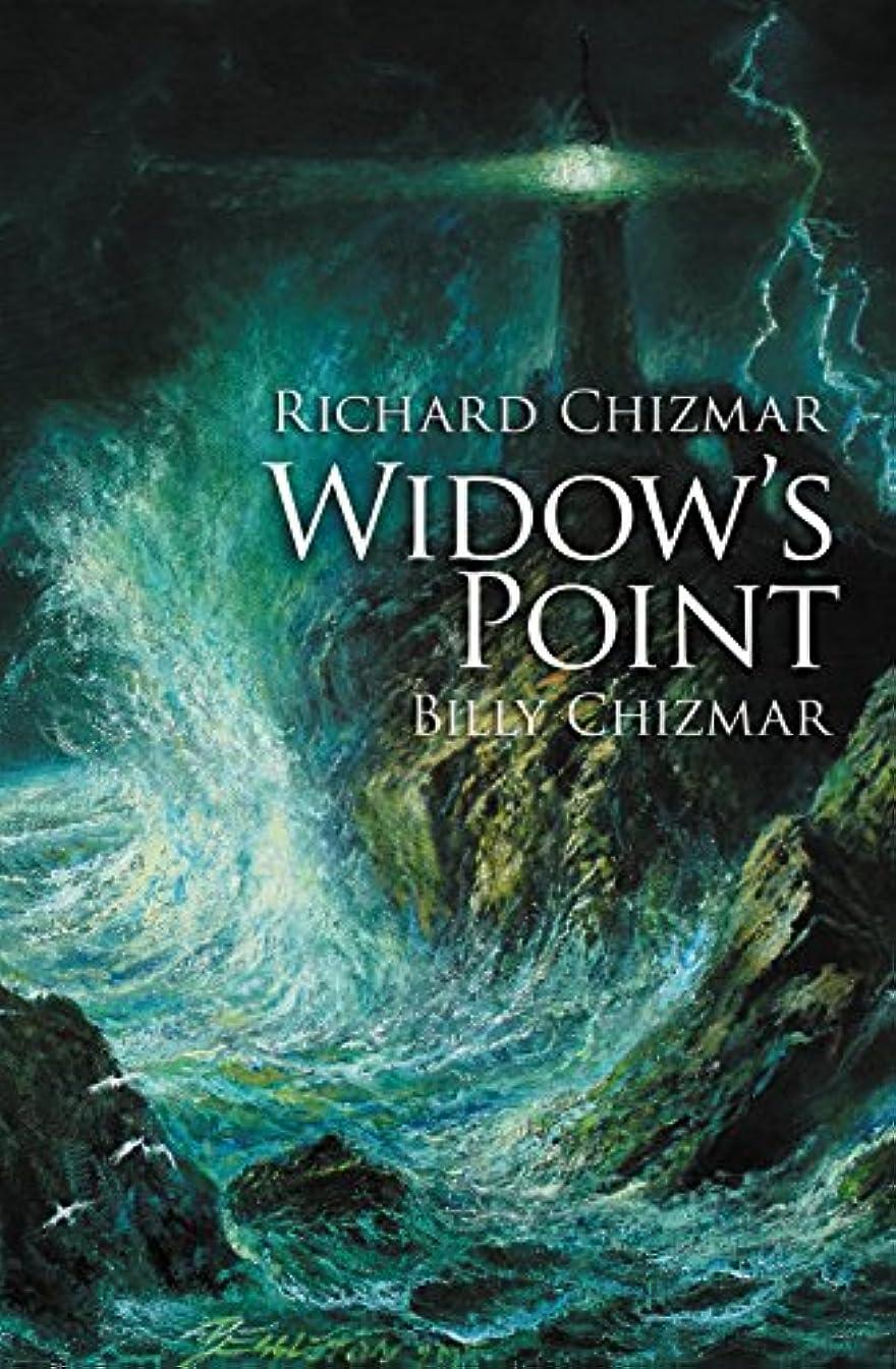 ギター特別な終わらせるWidow's Point (English Edition)