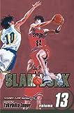 Slam Dunk, Vol. 13