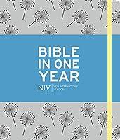 NIV Journalling Bible in One Year: Grey (Bible Niv)
