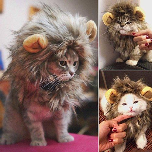 HORIZON 【 可愛さ 超 アップ 】 愛犬 愛猫 用 ウィッグ 「 ライオン の たてがみ (耳 付き) 」 おしゃれ 簡単 装着 着せ替え