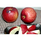 青森産 世界一りんご 5kg 超大玉9~10個入り 産地箱