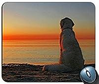 Labrador Retrieverノンスリップラウンドマウスパッドforホーム、オフィス、ゲームデスク 220 * 180 * 3 mm