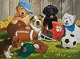 200ピース ジグソーパズル  ボールで遊ぶ犬 Let's Play Ball  (49 x 36 cm)