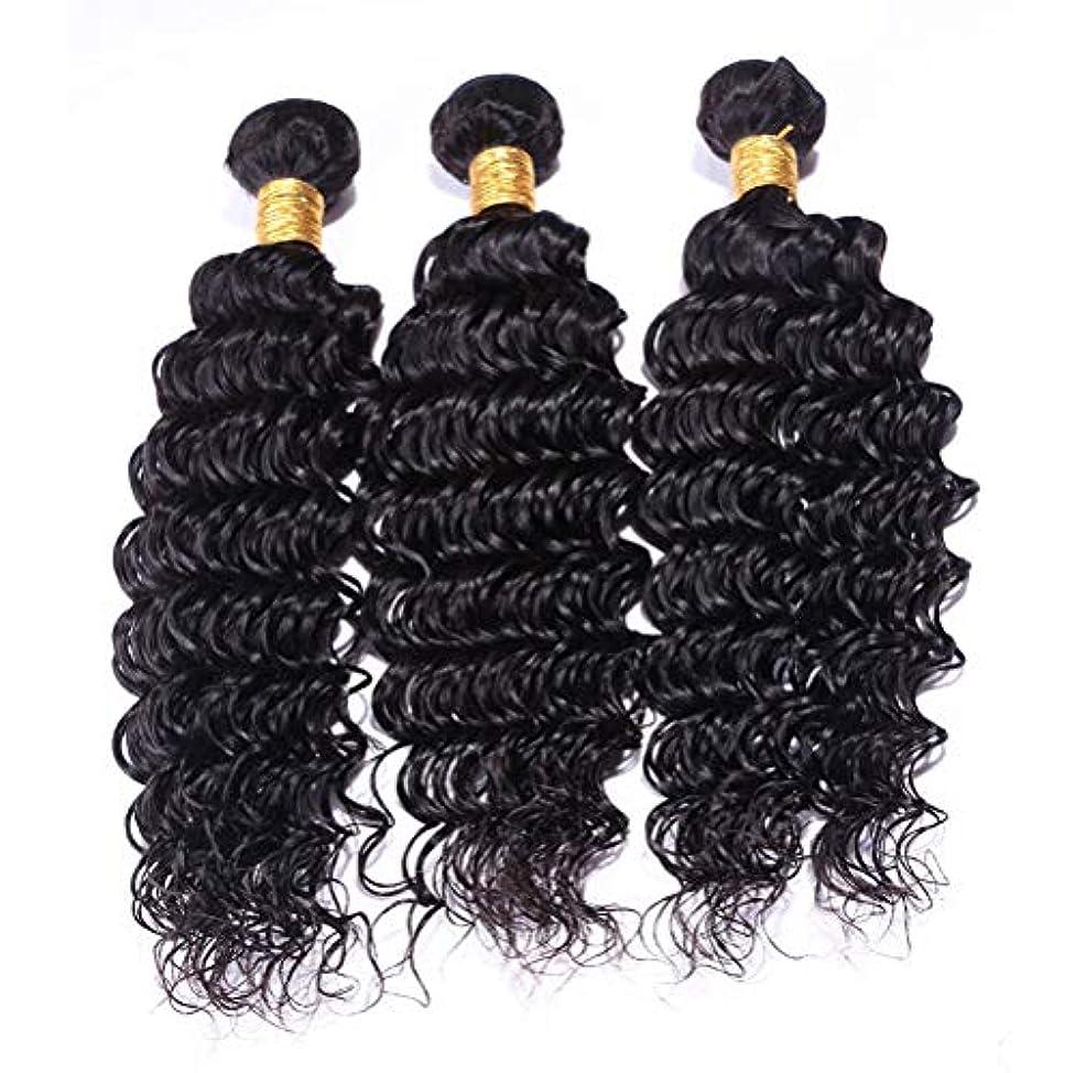 何十人も巡礼者構成毛織り8aブラジルカーリーヘア1バンドルブラジル人変態カーリーヘアブラジル人毛エクステンションバージンカーリーヘア