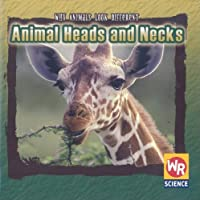 Animal Heads And Necks (Why Animals Look Different)